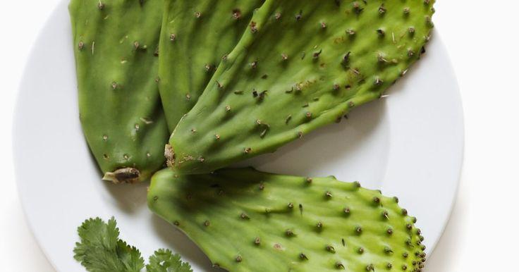 Como cozinhar folhas de cacto. Uma olhada rápida para os espinhos do figo-da-índia, ou palma, não sugere que qualquer parte deste formidável cacto seja comestível, mas assim que a pele espinhosa é removida das folhas suculentas, uma polpa saborosa e nutritiva é revelada. A polpa grossa, também conhecida como nopalito, é uma fruta versátil, doce e com poucas calorias que pode ...