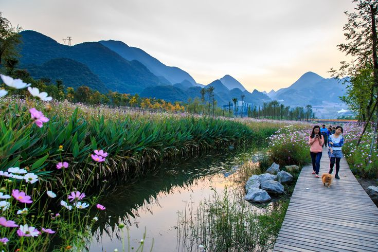 Galería de Parque del humedal Minghu / Turenscape - 14