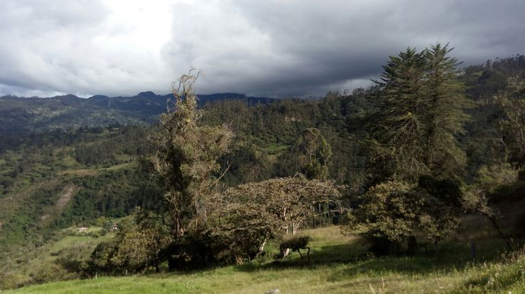 Sueva, Cundinamarca, Colombia