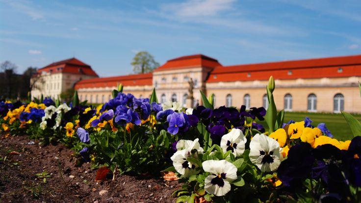 Charlottenberg Palace, Berlin/Charlottenberg