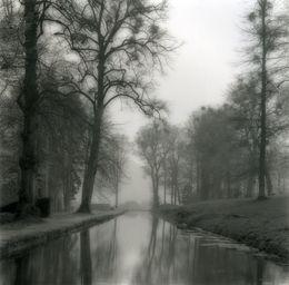 Lynn Geesaman, 'Annevoie, Belgium (4-04-3-2),' 2004, Yancey Richardson Gallery