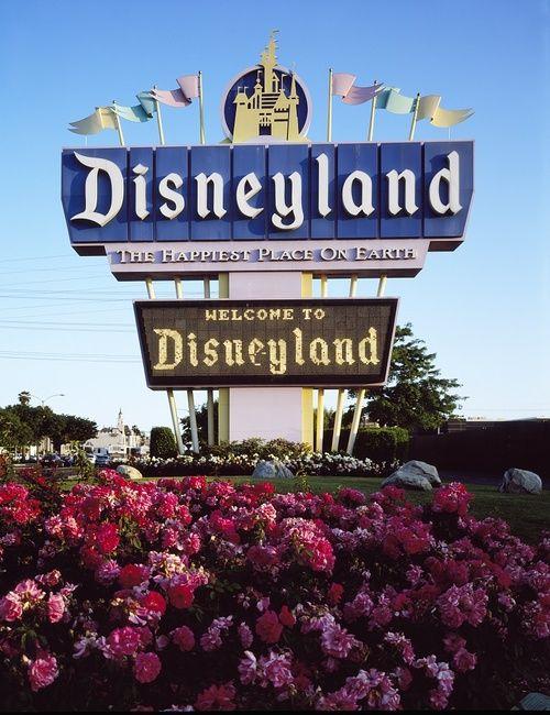 Disneyland Happiest Place On Earth Essay - image 7