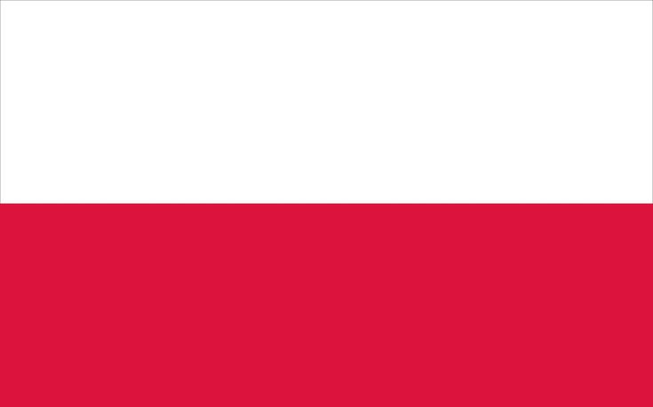 picture of polish flag