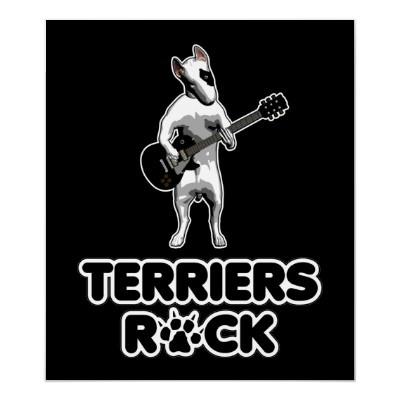 Terriers Rock!