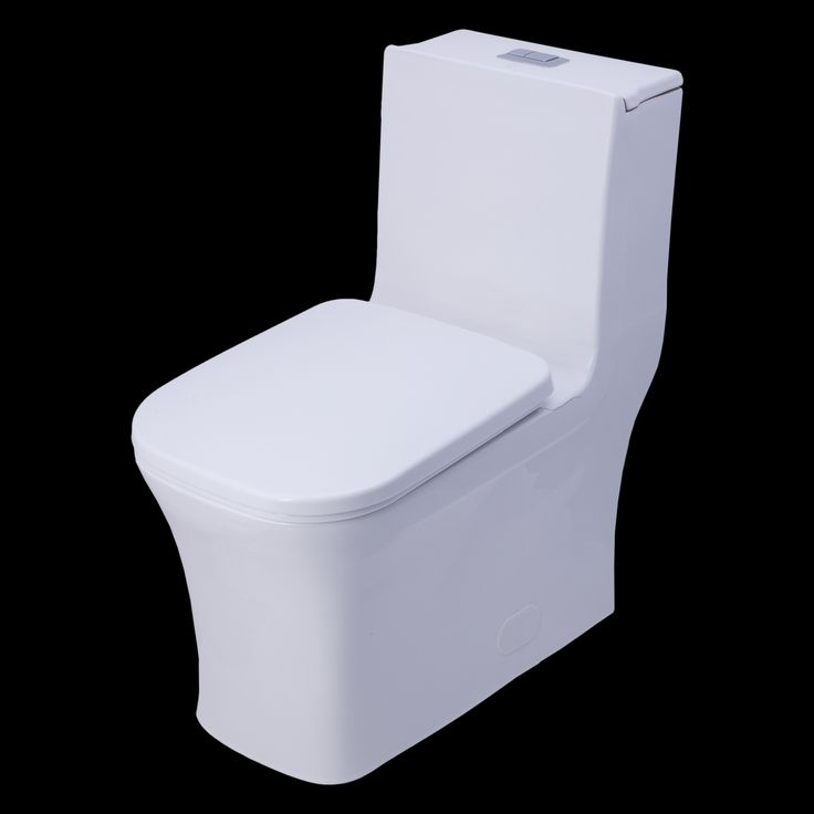 BAI high efficiency dual flush contemporary toilet Complete your modern bathroom with our contemporary back to wall, one piece, dual flush toilet. Manufactured from high quality Vitreous China and des