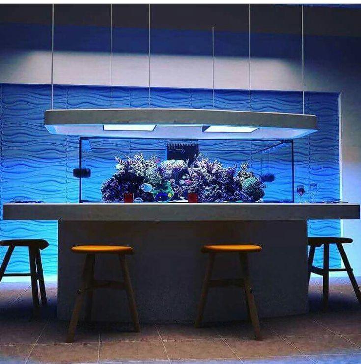 118 Best Images About Modern Design Aquariums On Pinterest