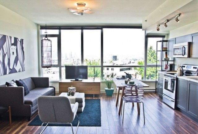 aménagement salon salle à manger -canape-gris-tapis-noir-fenetre-panoramique
