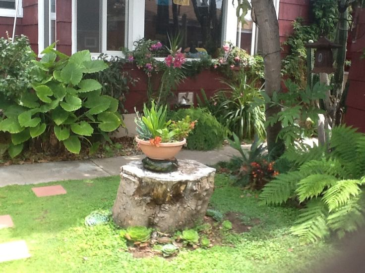 38 Homes That Turned Their Front Lawns Into Beautiful: 9 Best What To Do With Tree Stumps Images On Pinterest
