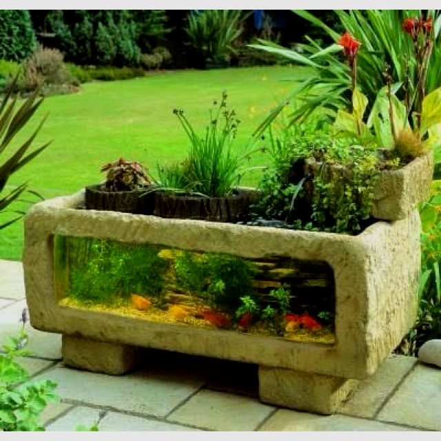 Fish tank planter!!