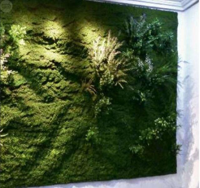 diferentes medidas y formatos de cesped artificial musgo losetas para jardin vertical boxwood