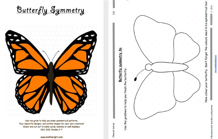 Butterfly Symmetry - Four beautiful designs, and outline shapes for your own creations! Colour and cut out to make cards, mobiles or wall displays. Use the grids to help you make symmetrical patterns.