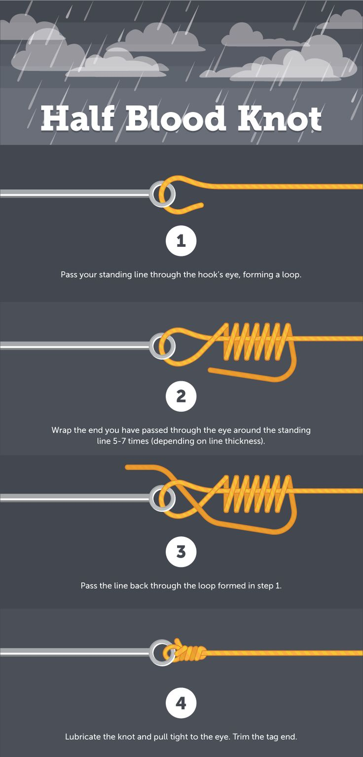 Half Blood Knot - Fishing Knot Encyclopedia