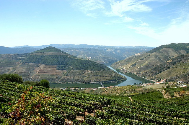 Pinhao, Douro in beautiful Portugal