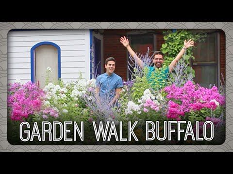 58 best images about buffalo new york on pinterest the for Landscaping rocks buffalo ny