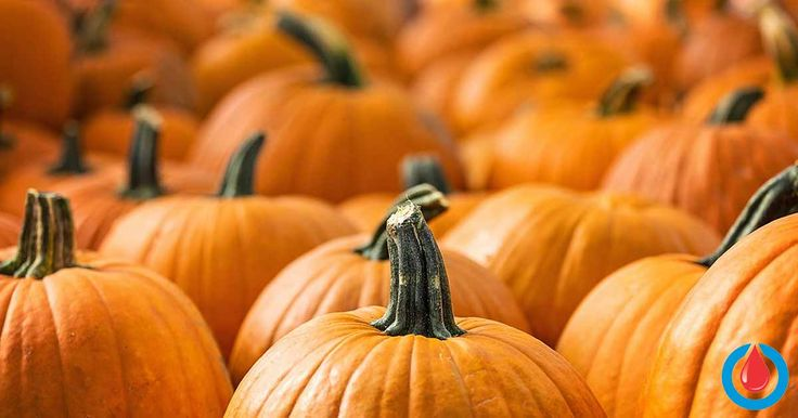 Pumpkins are rich in many essential vitamins and minerals like potassium, iron, manganese, vitamin A, vitamin C, riboflavin, and beta-carotene. Its nutrient content, however, depends on whether it's fresh or canned.    Canned pumpkin has higher levels