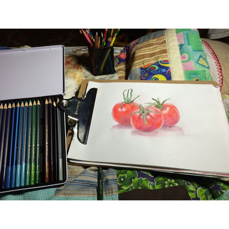 Drawing of tomatoes with colored pencils