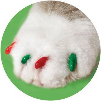 umm hello seasonal christmas ones yes please soft
