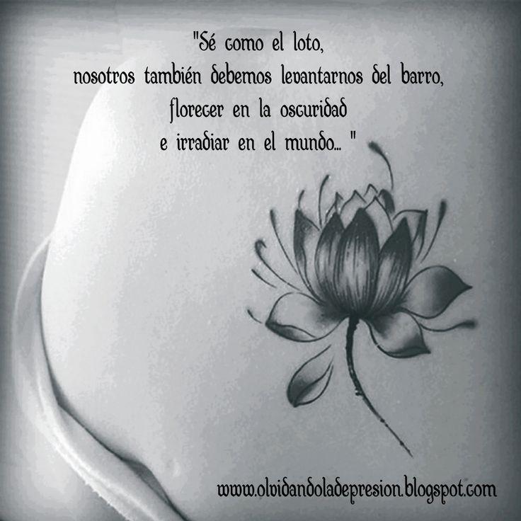 Sé como el loto, nosotros también debemos levantarnos del barro, florecer en la oscuridad e irradiar en el mundo...