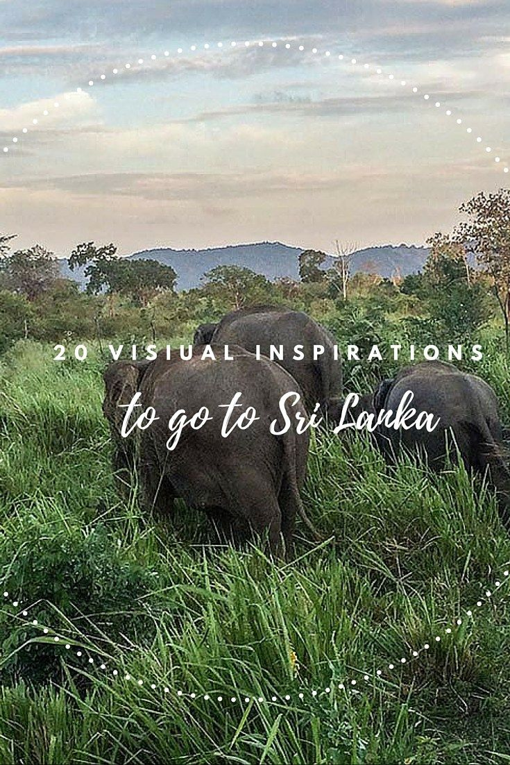 Need some good reasons and inspiration to go to Sri Lanka? Check out 20 pictures of Sri Lanka that will make you want to book a flight immediately!