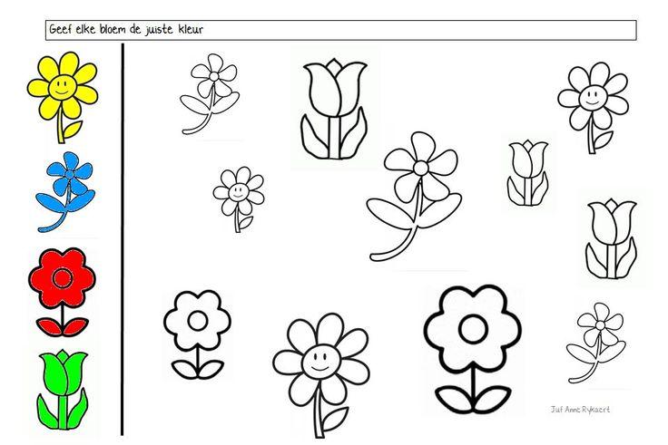 Lente : Geef iedere bloem de juiste kleur