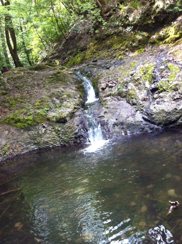 Little water fall in the forest