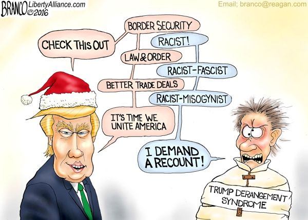Trump Derangement Syndrome – Demonstrated by the left's loony actions from rioting in the streets to demands for a recount.
