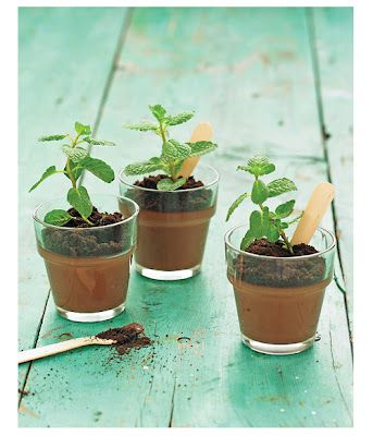 coolest dessert. Chocolate Pudding flavored with mint, cookie crumbs may act soil and a small mint sprig, tadaaa ...