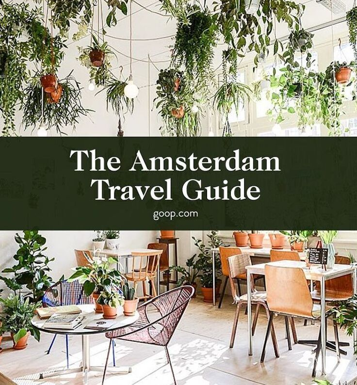Our travel guide to Amsterdam: Activities, things to do, where to stay, eat, drink, shop, and more.