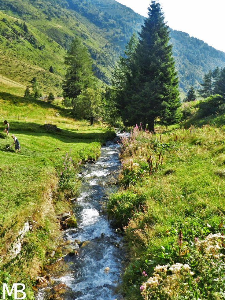 Torrente in Valle di Viso - Stream in Valle di Viso