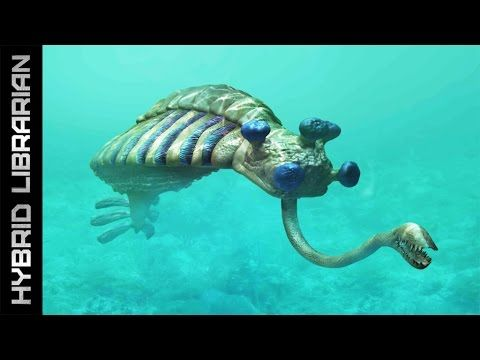 World's 10 Most Mysterious Underwater Anomalies - YouTube ...