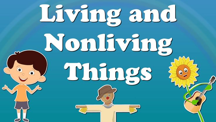 Living and Nonliving Things for Kids