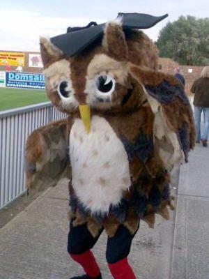 Ollie the Owl - Eastbourne Borough