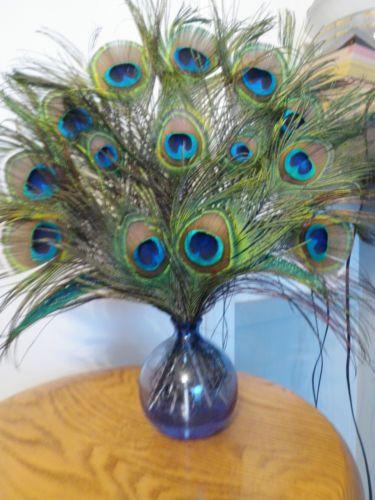 Peacock Feather Arrangement