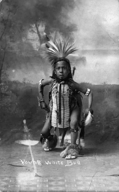 YOUNG WHITE BULL , 1913