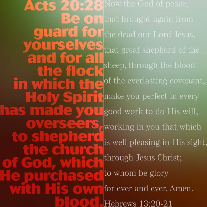 Acts 20:28 and Hebrews 13:20-21. #wordsearch #Bible #Christian #advent