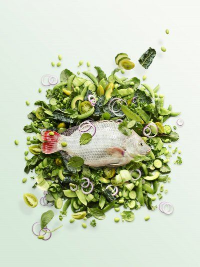 Fish on a bed of greens. Photo by Maya Visnyei