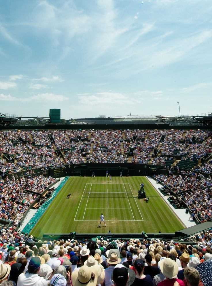 """Flying Ants Invaded Wimbledon & It Was """"Like A Horror Movie""""+#refinery29"""