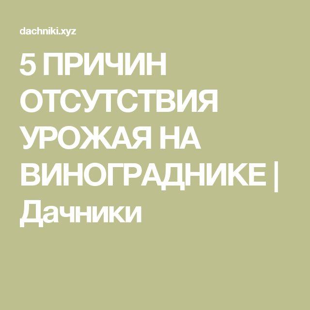 5 ПРИЧИН ОТСУТСТВИЯ УРОЖАЯ НА ВИНОГРАДНИКЕ | Дачники