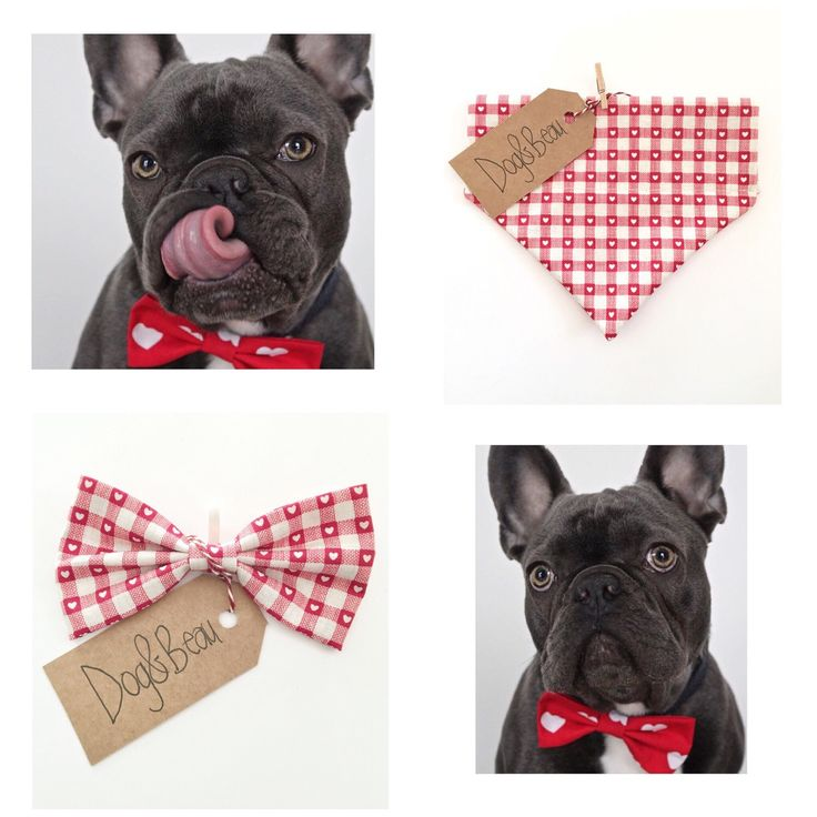 Valentine's Day bow ties and bandanas for your pup! #dogbowtie #vday
