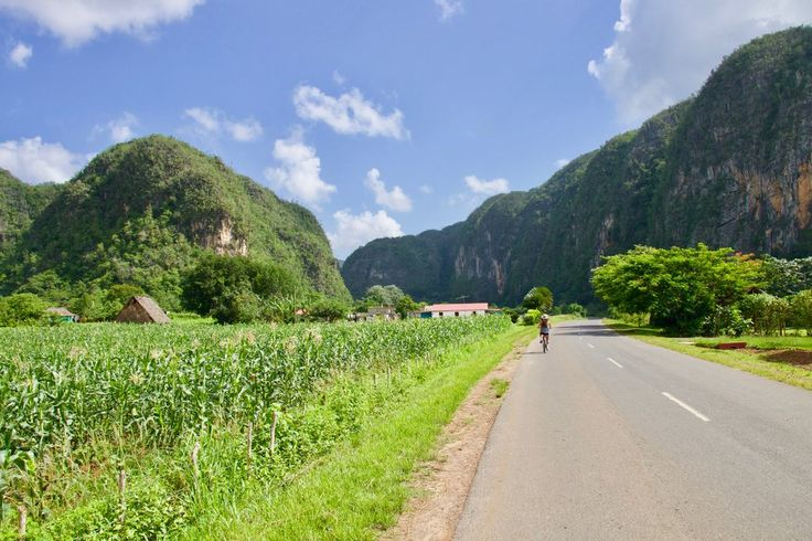 After a week of strolling the hectic Havana streets, we headed a few hours West to explore a small, charming town called Viñales. This entire region is the heart of Cuba's infamous tobacco farming with vibrant green fields as vast as the eye can see.   #Cuba #Havana #Viñales
