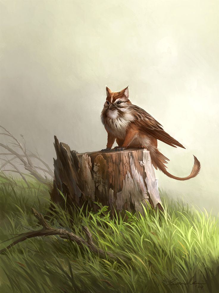 Small griffin by sandara monster beast creature animal create your own roleplaying game - A picture of a griffin the creature ...