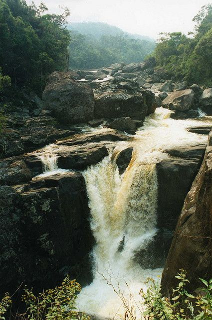 Ranomafana National Park, Madagascar-river that flows through the park