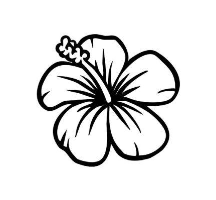 Easy To Draw Hawaiian Flowers -