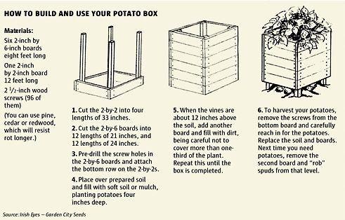 Kartoffelbox