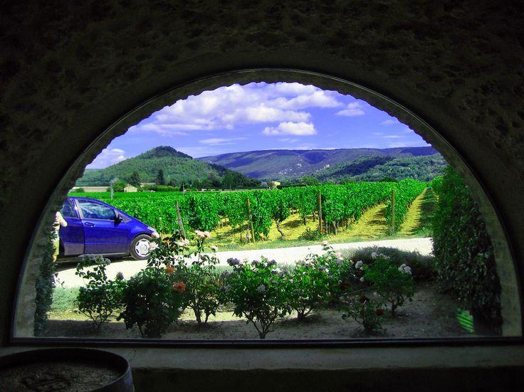 Piękny prowansalski krajobraz z okna pięknej winnicy, w której znajduje się unikatowe muzeum korkociągów