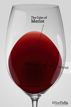 """""""Frutos rojos, taninos fáciles y un suave final son las características del Merlot."""" {Wine Folly}"""