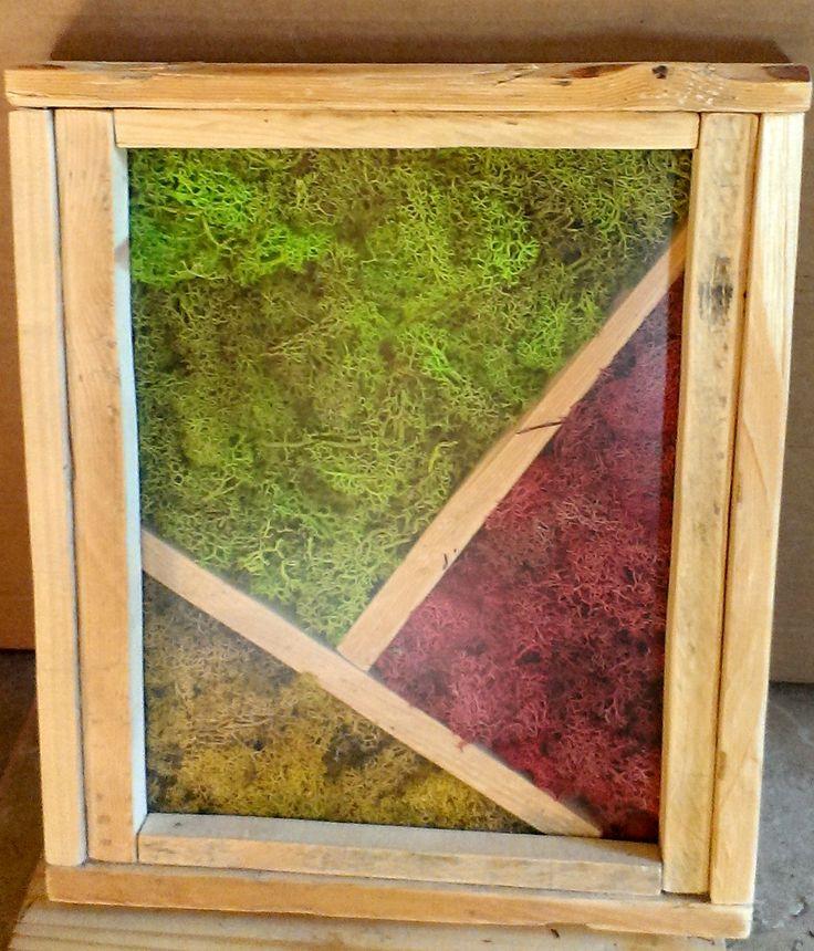cuadro preservado con tres tonos diferentes de liquenes y enmarcado con madera reciclada de palets