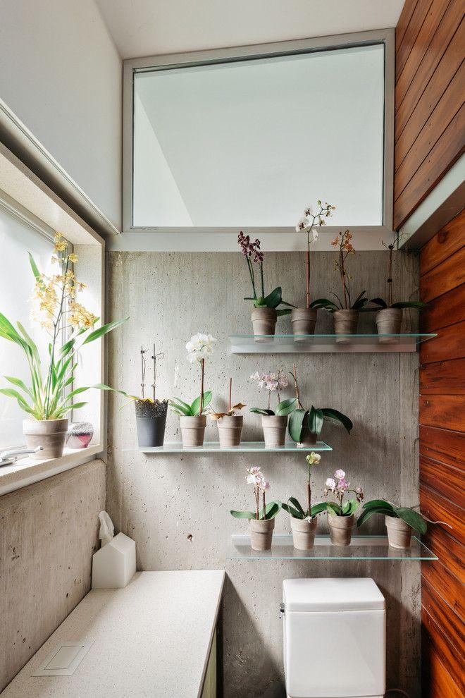 Incredible Indoor Plants Ideas India On Garden Server Outdoordesign Indoorplants