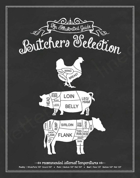 Butchers Selection An Illustrated Guide 11x14 by letteredandlined