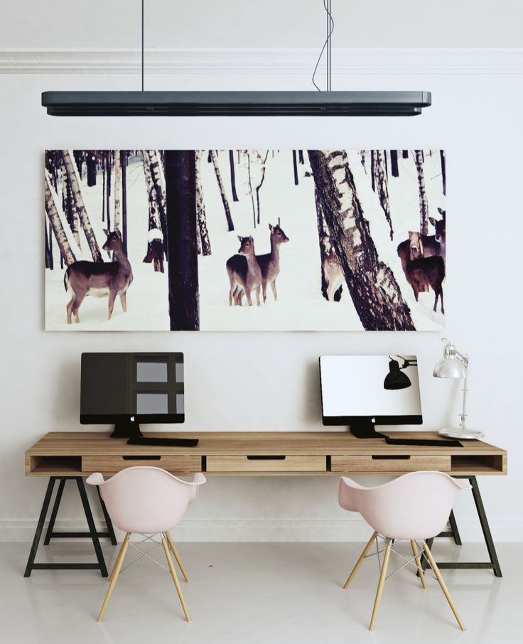 place for work, eames chairs, i took picture of roe deers in 2010.